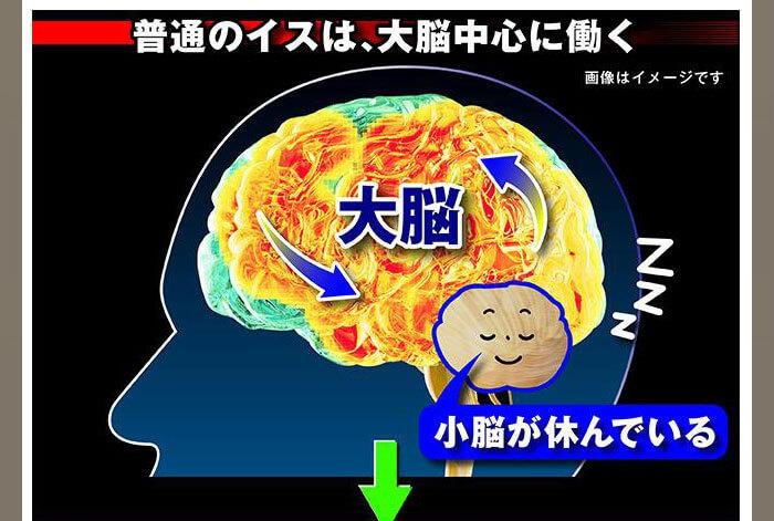 普通の椅子は大脳中心